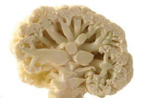 mozgani-cvetaca