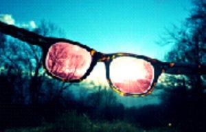 soncna-ocala