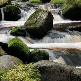 Rešitev za stres ni mir