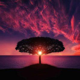 Ko se sprostimo in umirimo, se znajdemo v – stresu!