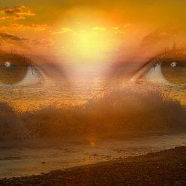 Moja realnost je odsev moje zaznave sveta
