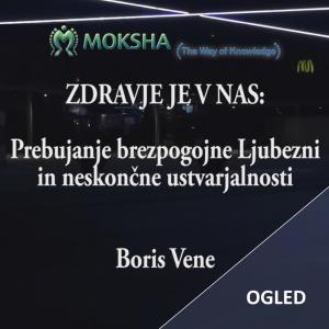 Seminar leta, Boris Vene – Spletni ogled