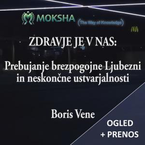 Seminar leta, Boris Vene – Spletni ogled + prenos